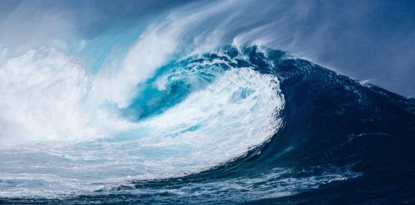 wave-1913559